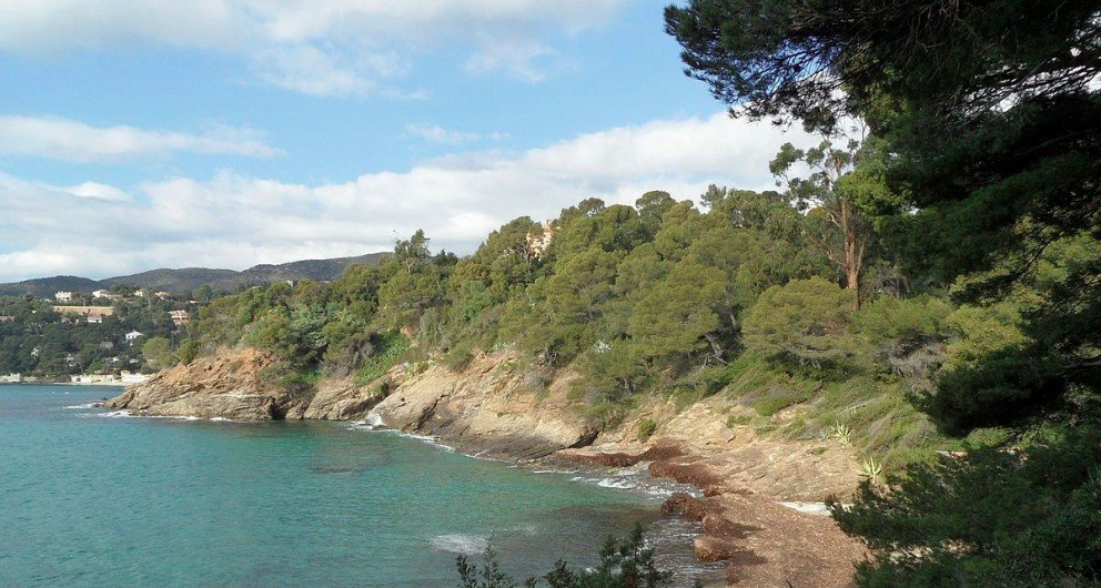 Route du Mimosa Itinerary - Royol Canadel sur mer