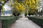 Mimosa Photo Gallery - Cemetery center