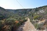 Provence's Blue Coast - Côte Bleue - electrical poles down to Calanque d'Erevine