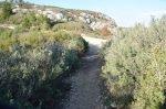 Provence's Côte Bleue - short cut path towards Calanque d'Erevine