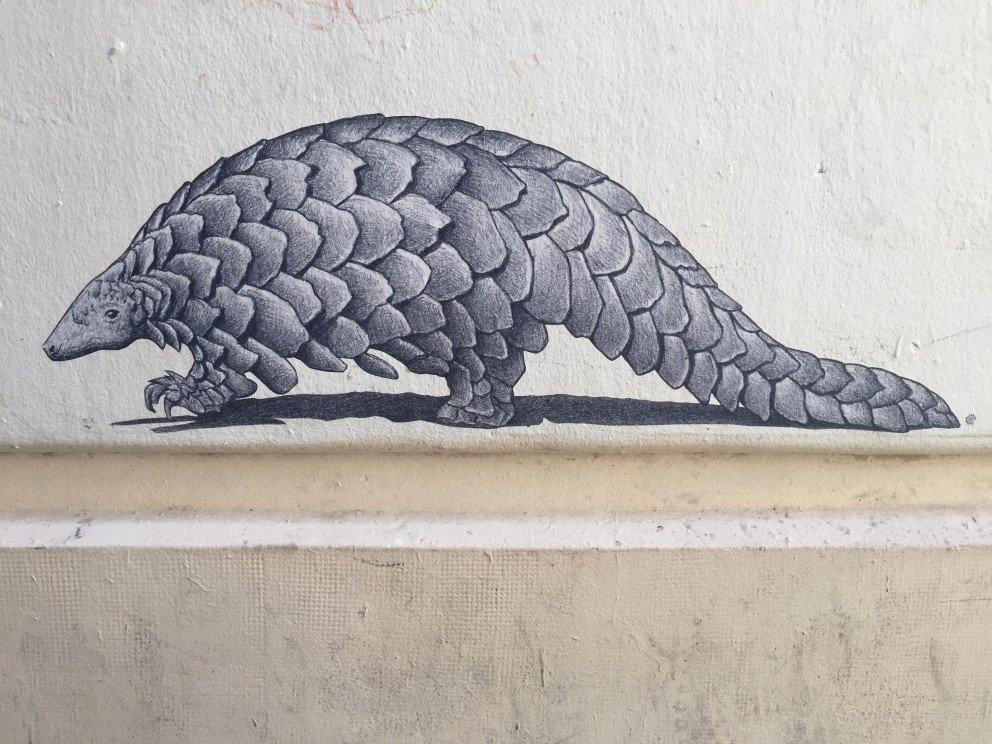 Parisian Street Art - Armadillo